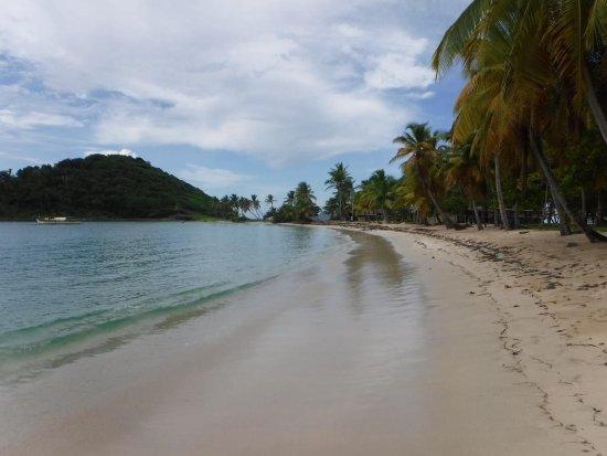 Mayreau: Beach