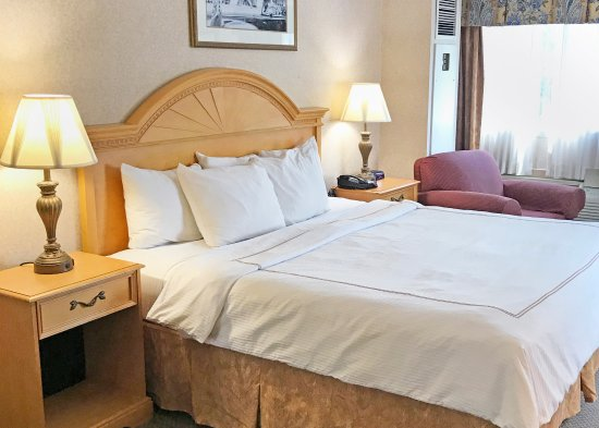 Red Lion Hotel Rosslyn Iwo Jima: King Room