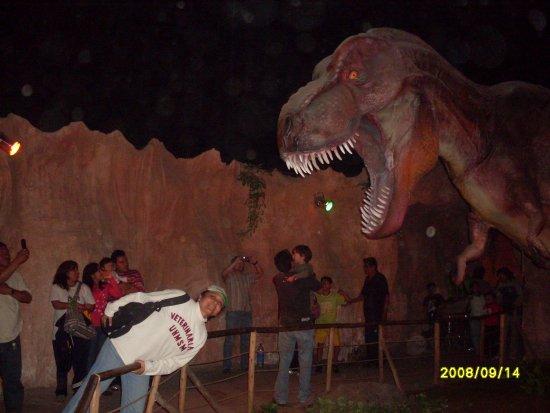 Uy El Dinosaurio Me Comera Picture Of Parque Zoologico Huachipa Lima Tripadvisor Tiempo completo, medio y parcial para zoológico huachipa. tripadvisor