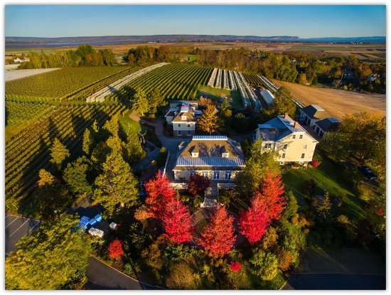 An aerial shot of Grand Pre Winery in autumn