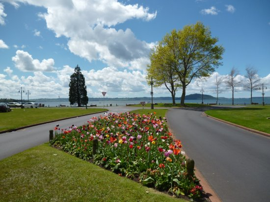 Lake Rotorua : De fondo, el Lago de Rotorua
