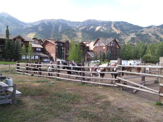 Teton Village Trail Rides Photo