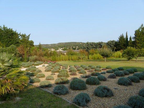 Lagnes, Francia: Jardin