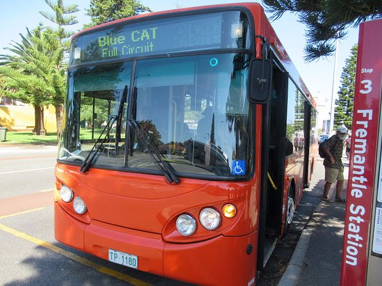 Timetable At Perth Airport For Bus 380 Picture Of
