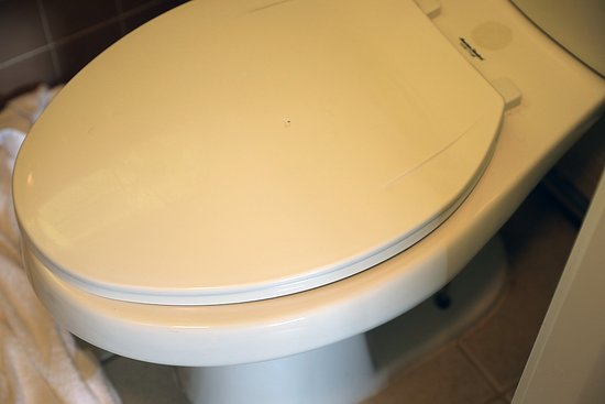 Happy Bear Motel: Bathroom seat doesn't properly align/fit the toilet bowl.