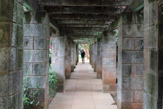 Karen Blixen Museum: garden path Blixen house