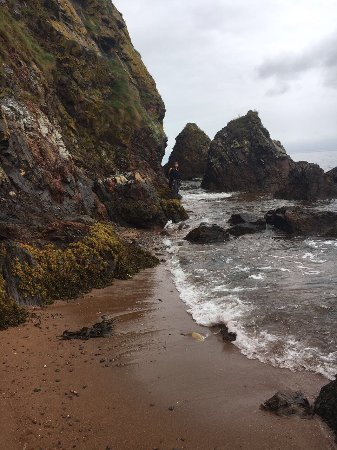 Rosemarkie, UK: photo0.jpg