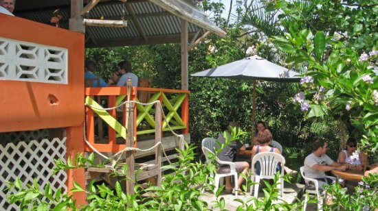 Shore Things Cafe: Our Backyard