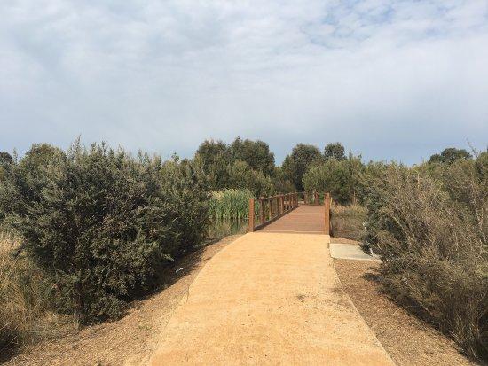 Cranbourne, Australia: Botanic Ridge Wetlands