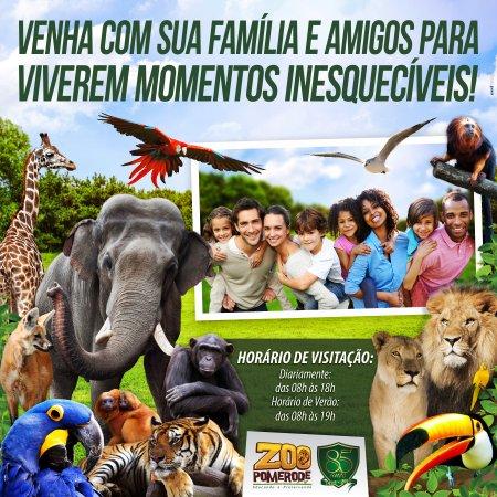 Sua família e amigos na maior diversão! Venha :)