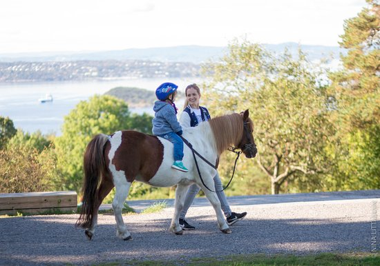 EKT Rideskole og Husdyrpark