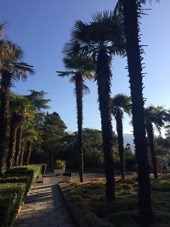 Hurzuf: парк при санатории