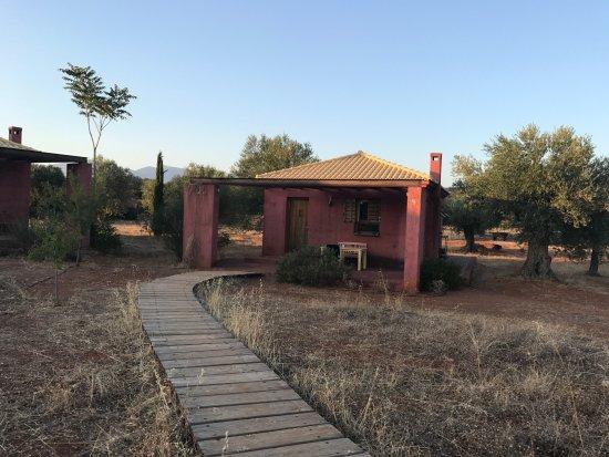 Eumelia Organic Agrotourism Farm & Guesthouse: The Sunflower House