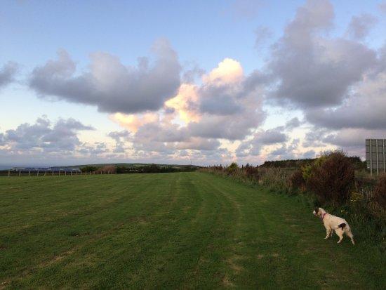 Mortehoe, UK: Dog walk field