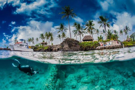 Paradise Taveuni: Shore diving