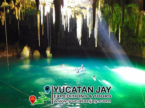 Valladolid, México: Tour Día de Cenotes y Tour Mayan Birding