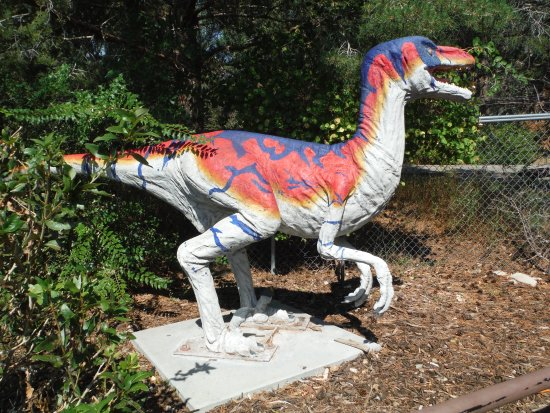 写真George S. Eccles Dinosaur Park枚