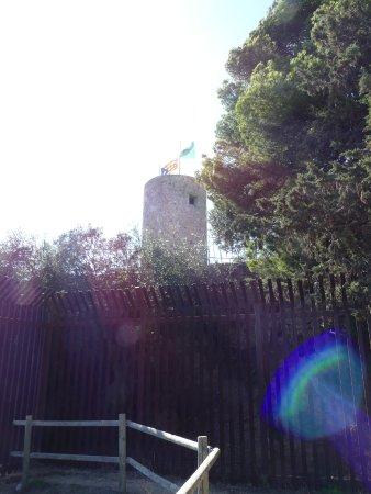 Castell de Sant Joan (Sant Joan Castle) : Вид на замок из за ограды