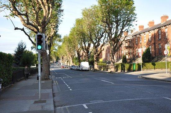 تشارلفيل لودج هوتل: Улица возле отеля