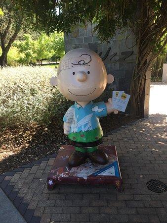 Santa Rosa, Kalifornia: チャーリーが見送り
