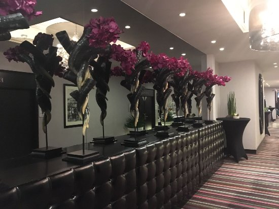 Thon Hotel Bristol Stephanie: IMG-20170921-WA0023_large.jpg