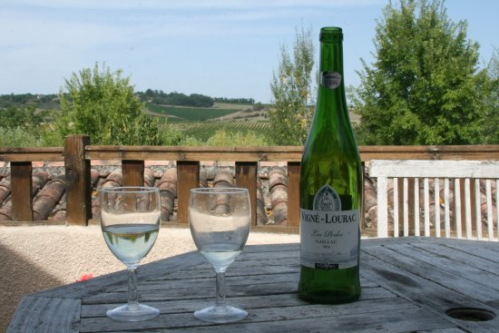 Gaillac, Frankrig: The view of the surrounding vineyards (plus their produce)