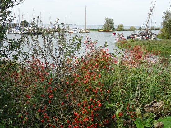 Vecht river at Muiden harbour