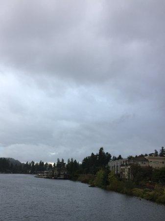เลกออสวีโก, ออริกอน: lake view