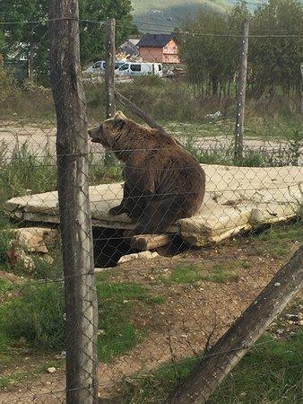 Korenica, Chorwacja: photo0.jpg
