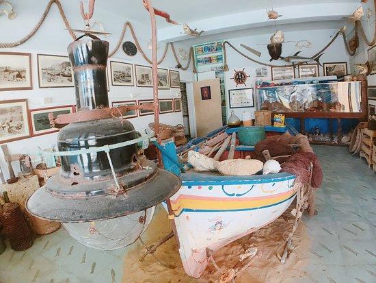 Museo dell'Acciuga