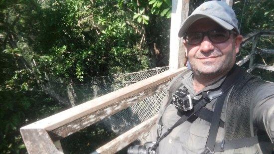 Inkaterra Ecological Reserve : Sobre la selva