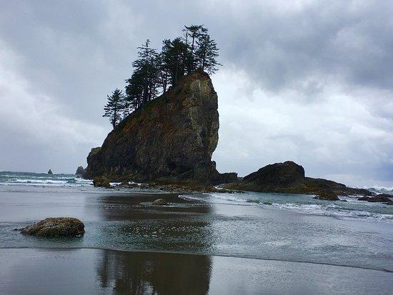 Second Beach Trail: photo0.jpg