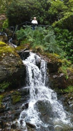 Macdonald Forest Hills Hotel & Spa: small waterfall on the hotel property