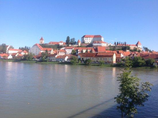 Ptuj, Slovenia: Lovely river walk near hotel