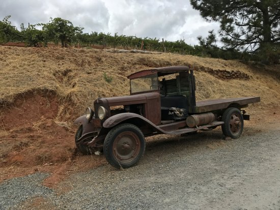 Placerville, CA: Cool old truck! Somebody restore it please.