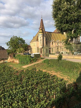 Aloxe-Corton, Prancis: View from breakfast room