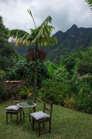 San Juan la Laguna, Guatemala: Garden with cliffs in the background