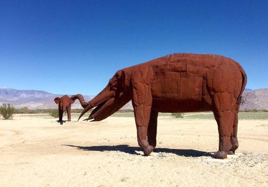 Боррего-Спрингс, Калифорния: Mammoth