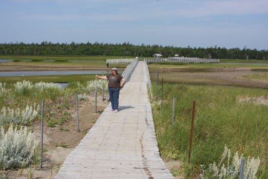 Saint-Louis-de-Kent, Kanada: My wife can't walk far, so obviously, this is an easy walk.