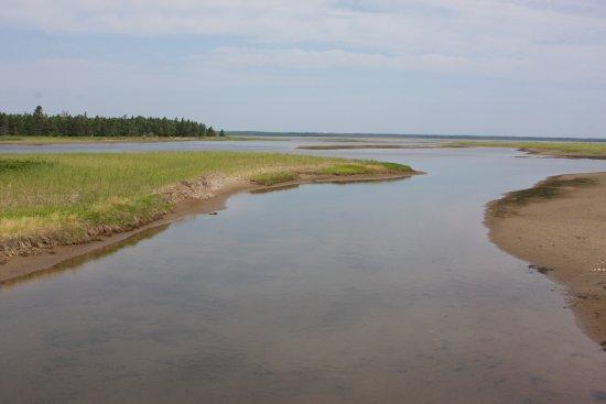 Saint-Louis-de-Kent, Kanada: Salt marsh.  Without the boardwalk, access would be questionable.