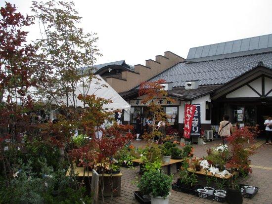 Michi-no-Eki Tono Kazenooka