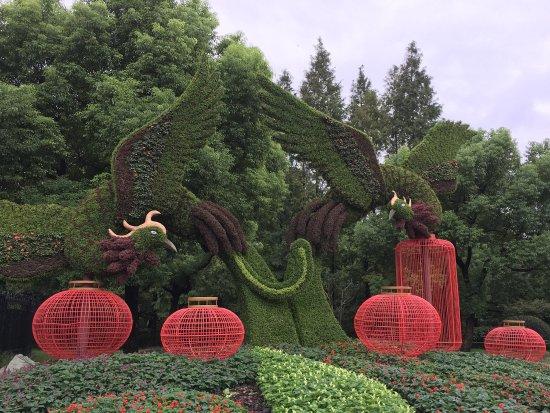 Shanghai Botanical Garden: photo0.jpg