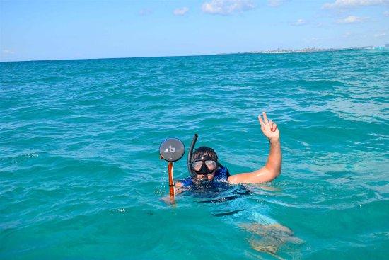 Water Bike Snorkeling Tour, Gold Coast.