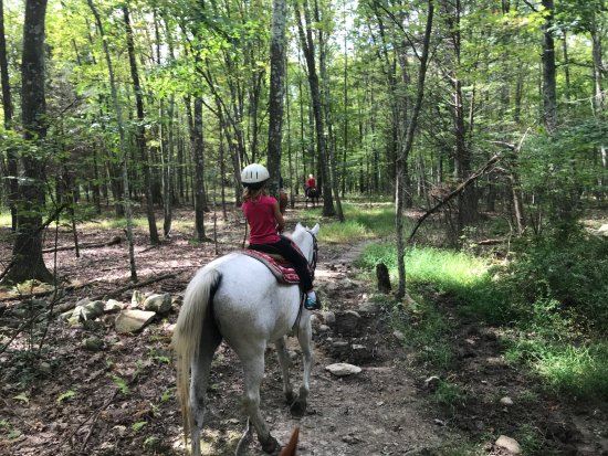 Bullville, NY: The one-hour trail ride led through forest...