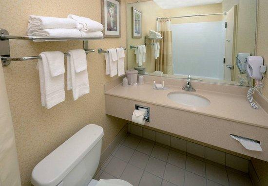 Hopewell, Virginie : Guest Bathroom