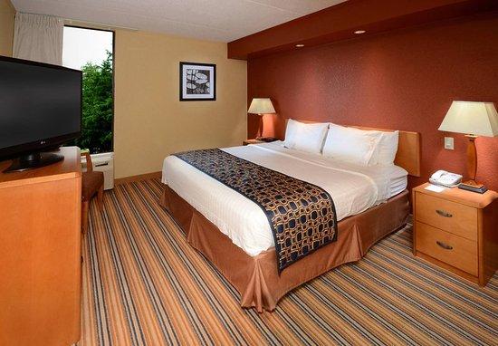 Hopewell, Virginie : King Guest Room