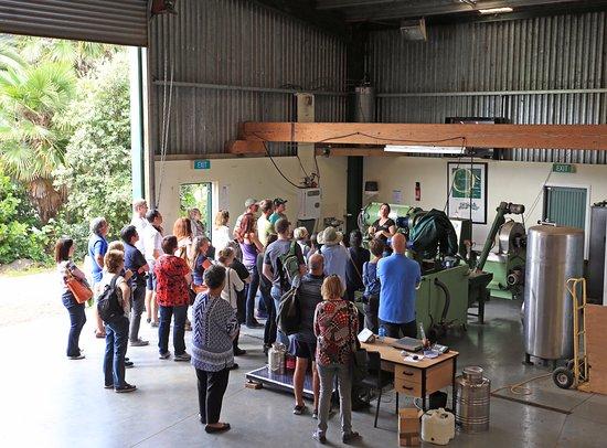 Waiheke-øya, New Zealand: Factory Tour and Tasting
