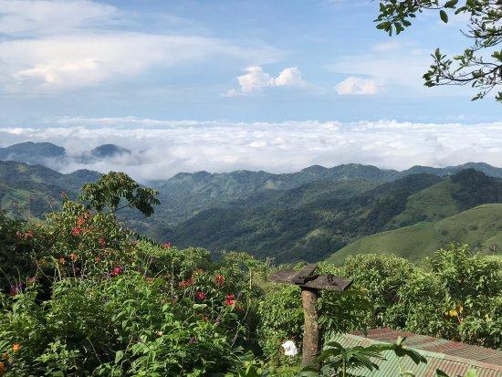 Costa Rica Monkey Tours Groupon Reviews