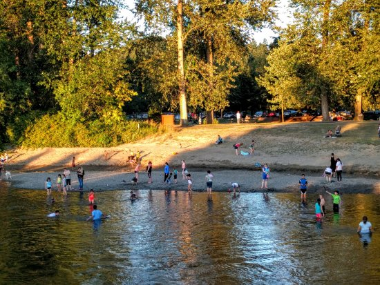 Auburn, WA: Summer time. Riverside beach at Isaac Evans Park.