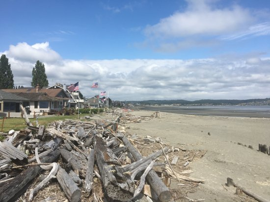 Freeland, WA: Cottages in the Shells